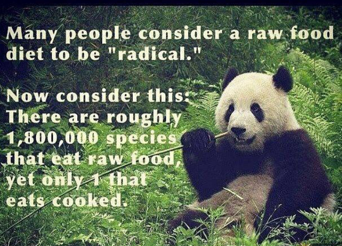 A vegan and basically raw diet can and must be embraced: most of the living species are raw