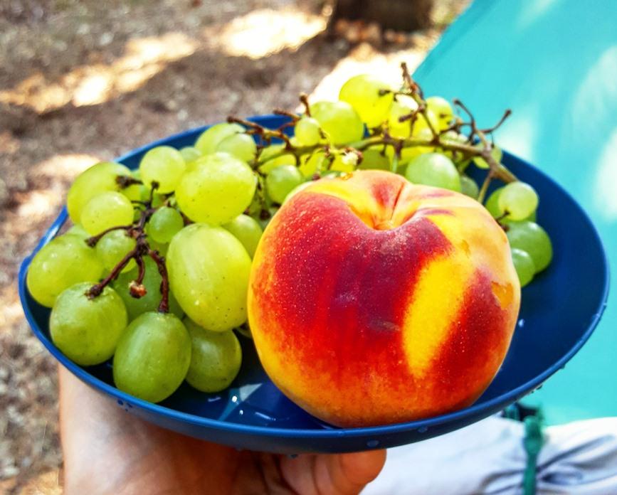 Breakfast: important morning routines. Still fruits